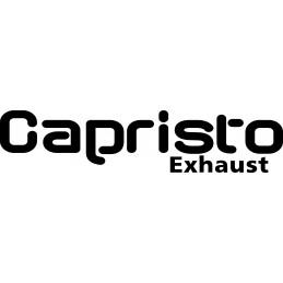 Capristo Audi S4 V6 - V8